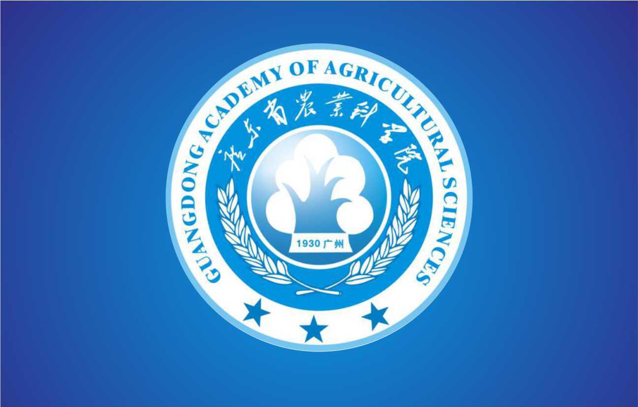 广州企业VI设计 政府标志设计